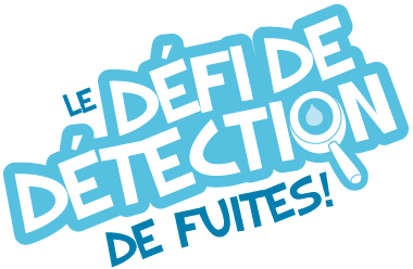DefideDetection-logo