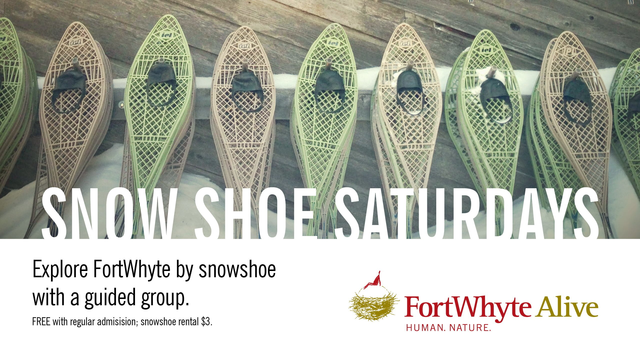 FWA-Alloway-Screens-December-Snowshoe