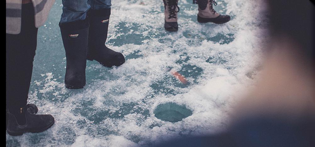 Carousel-image-icefish