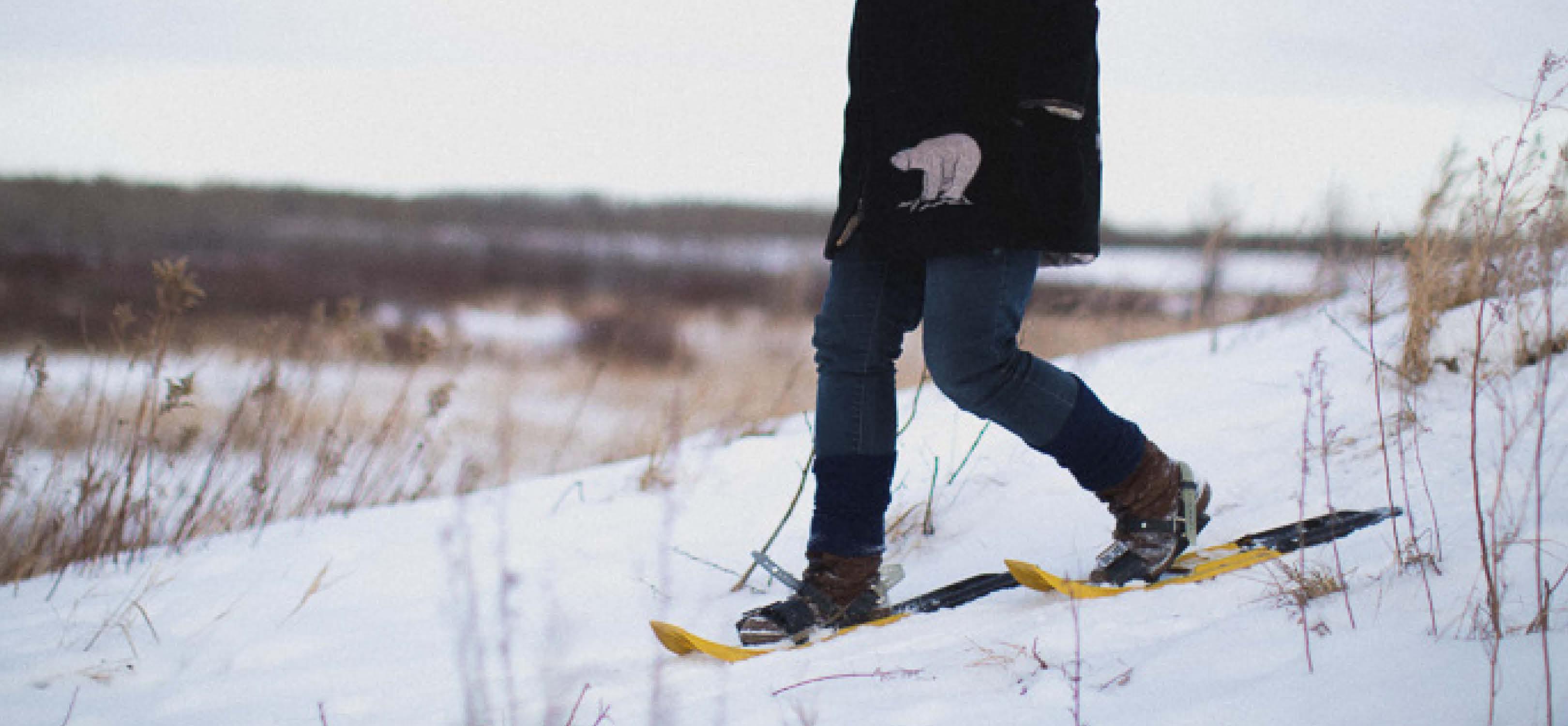 snowshoe2-banner