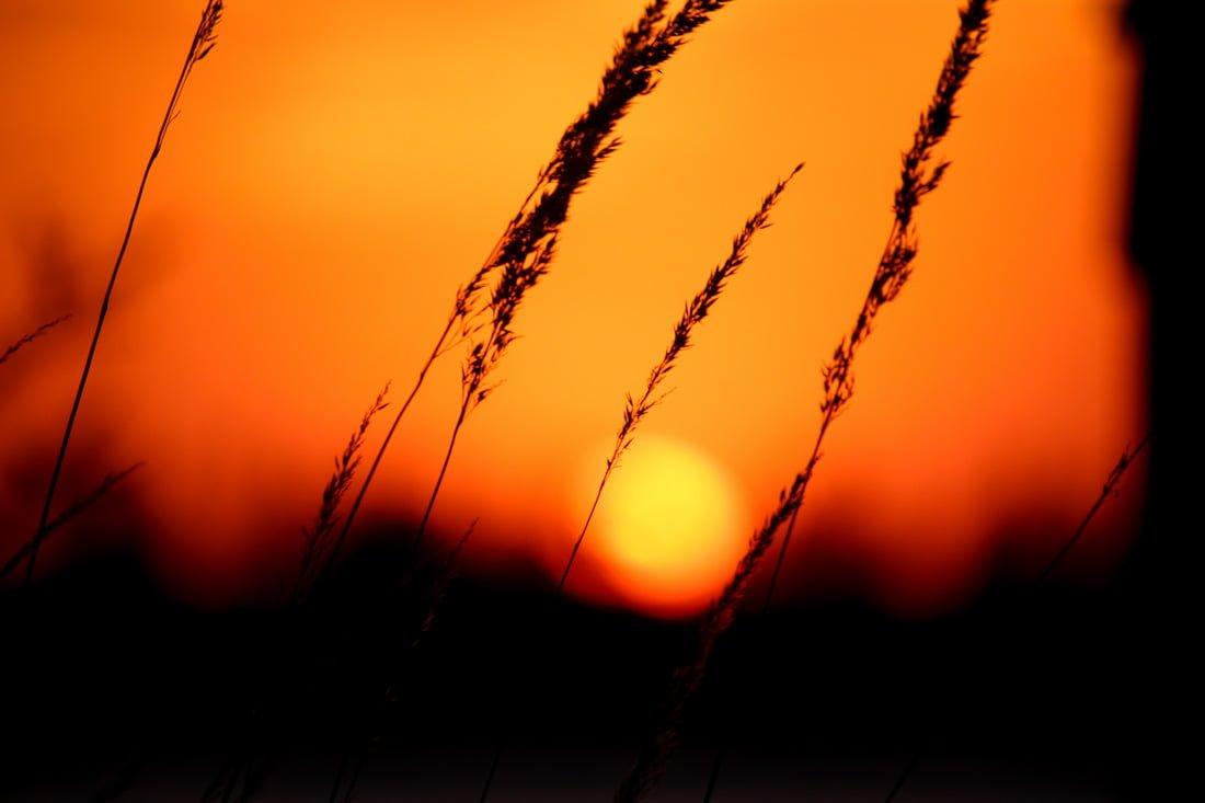 Αποτέλεσμα εικόνας για sunset