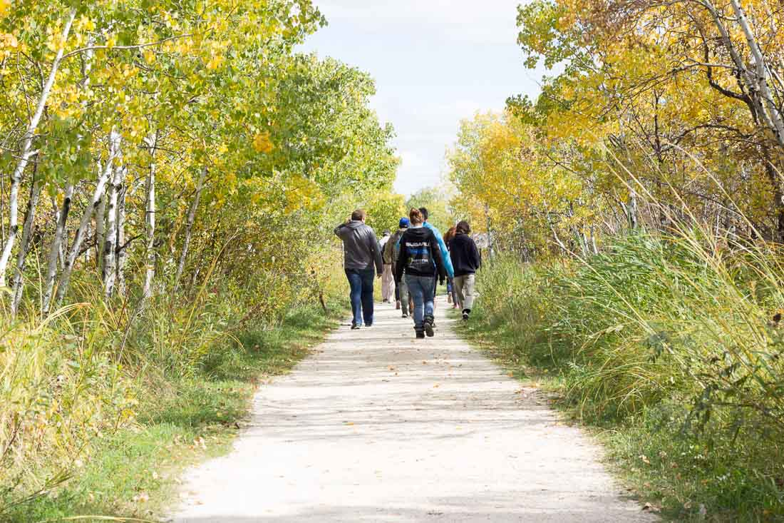 Leisure Walk for Older Adults - CANCELLED