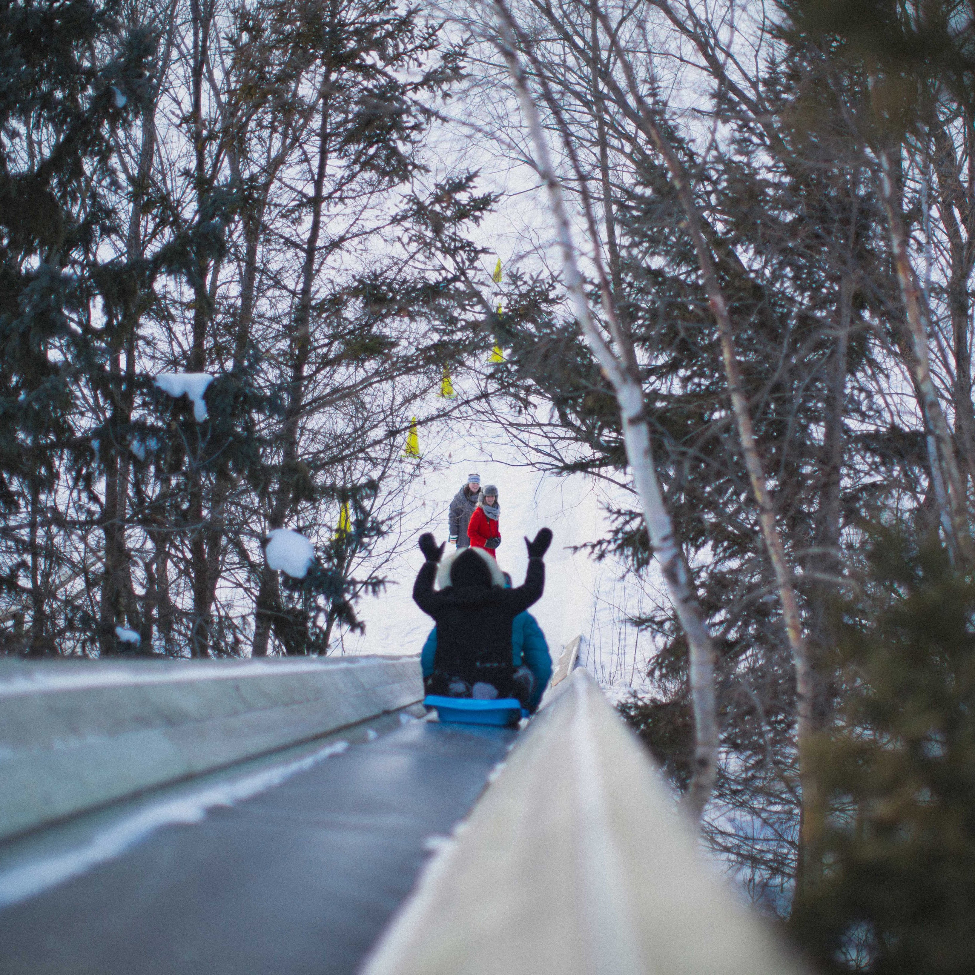 Picture of two children sliding down the toboggan run.