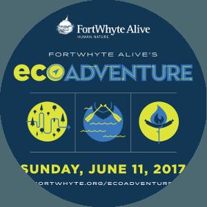 The New Eco Adventure