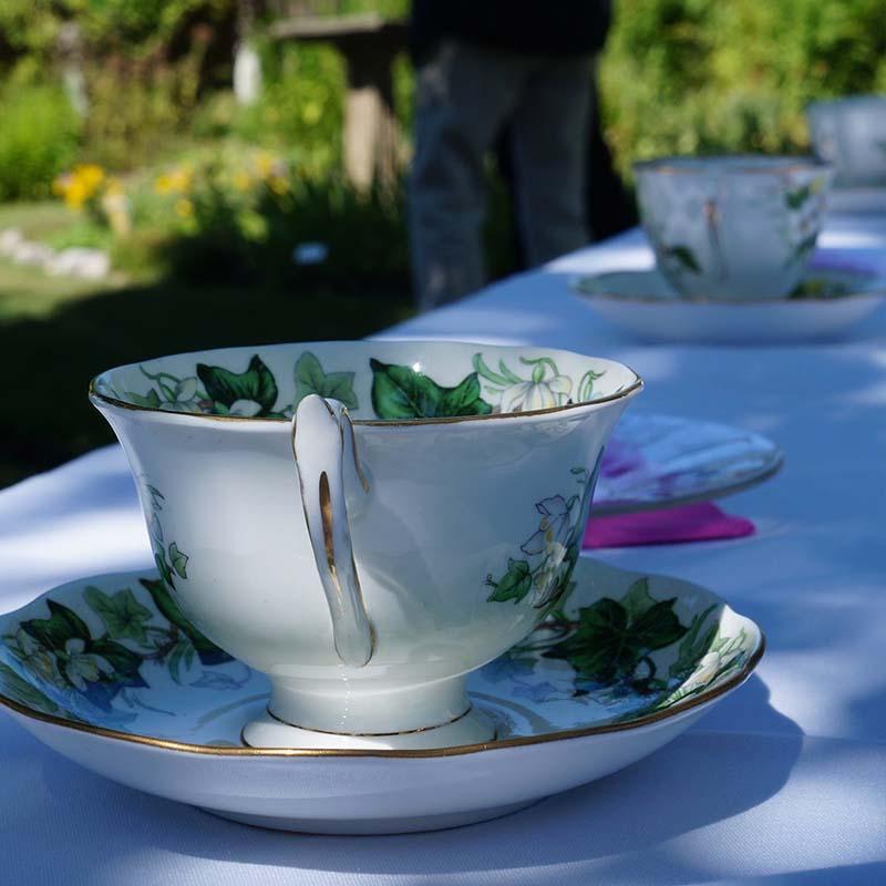 Tea in the Biodiversity Garden