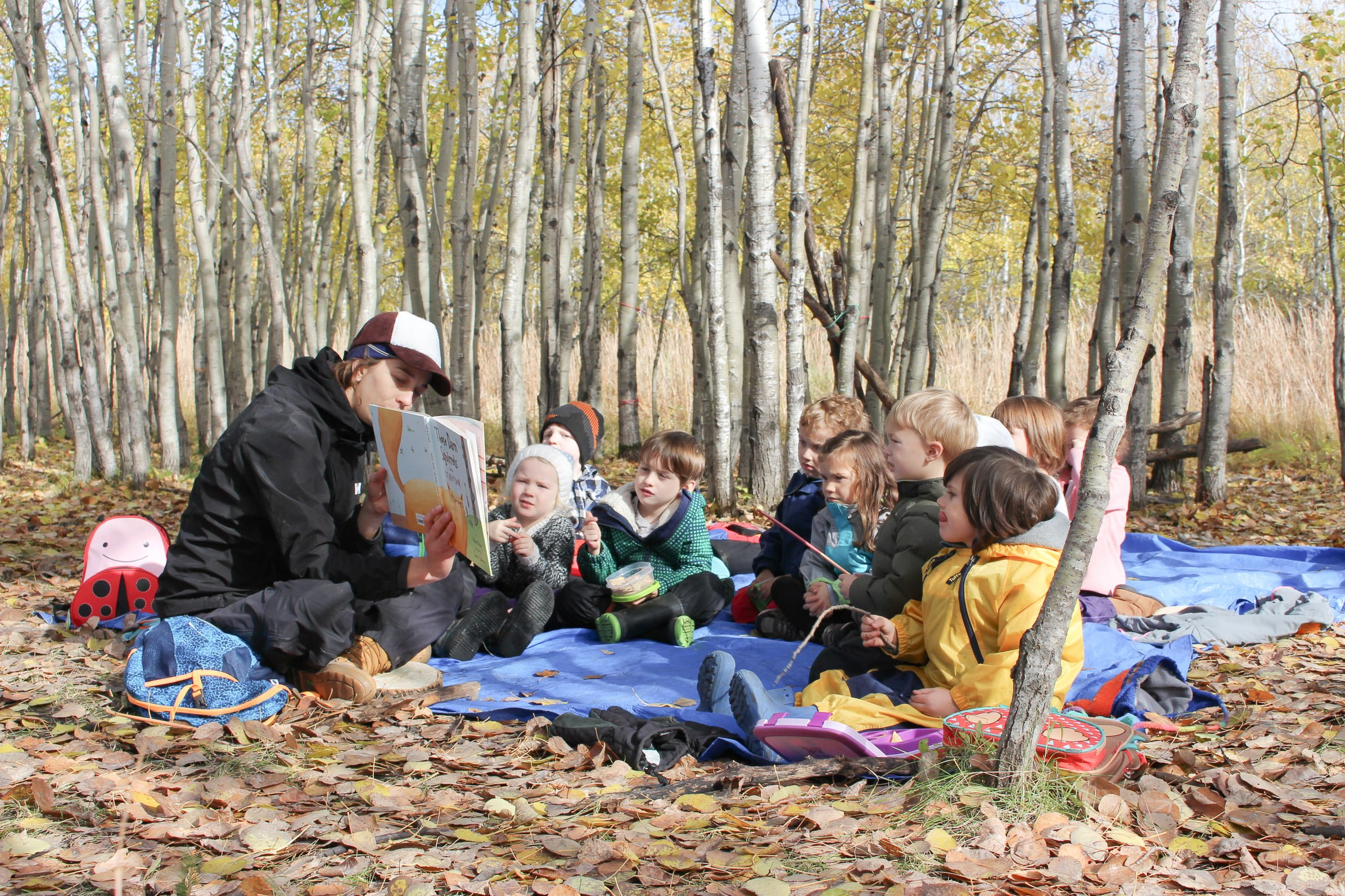 Forest School – Fall 2017 Session