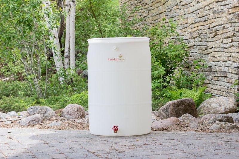 FortWhyte rain barrel