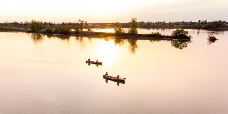 Group canoeing across a lake at FortWhyte Alive