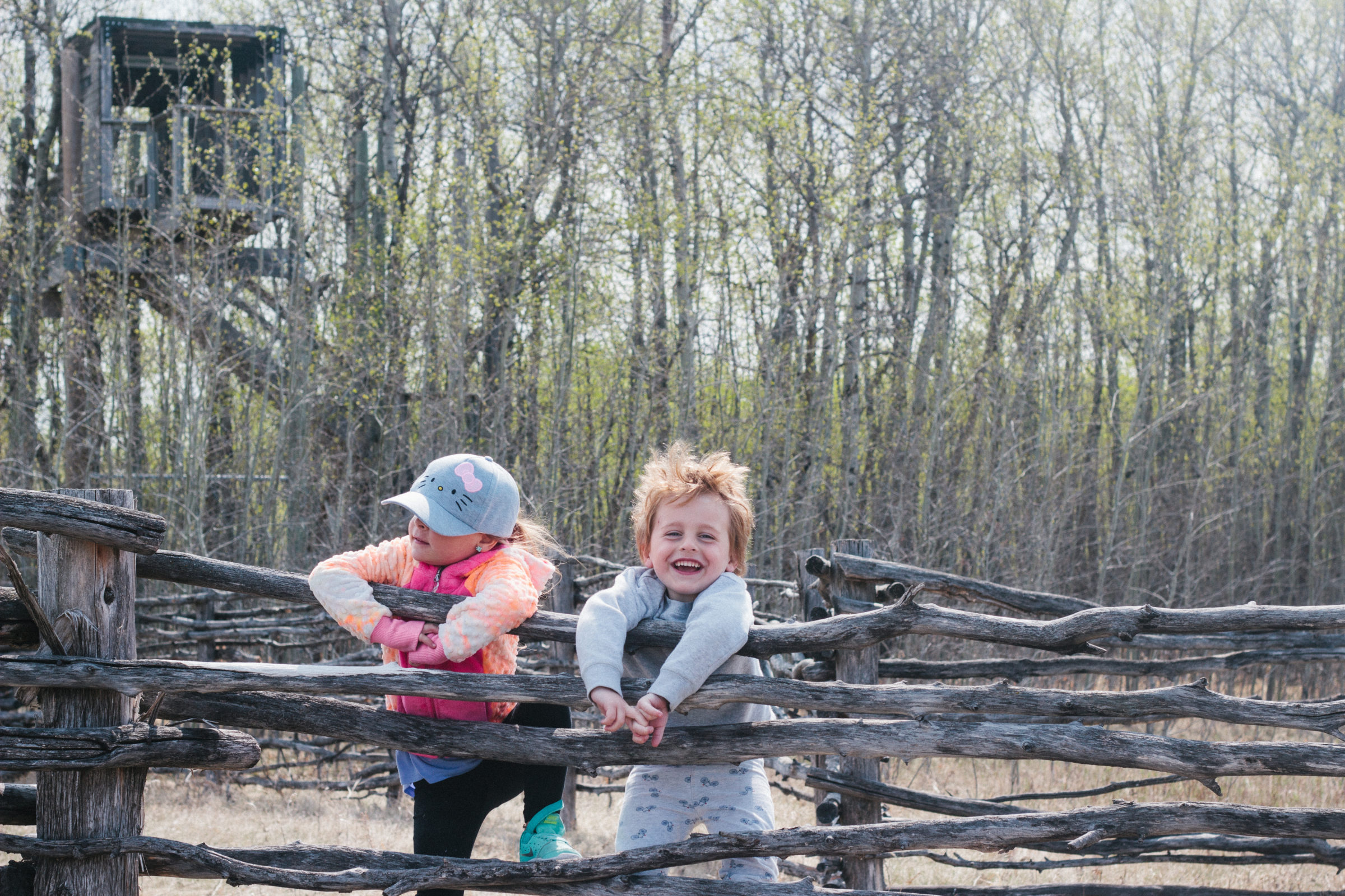 Two children climbing over wooden fence