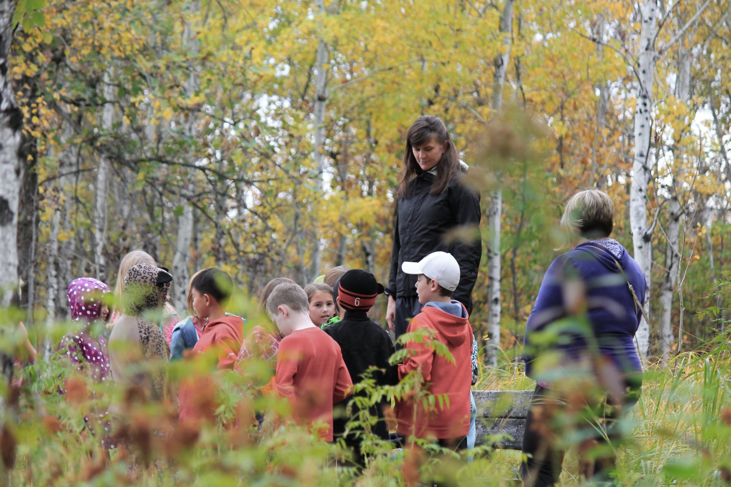 Forest School leader guiding group of children in autumn