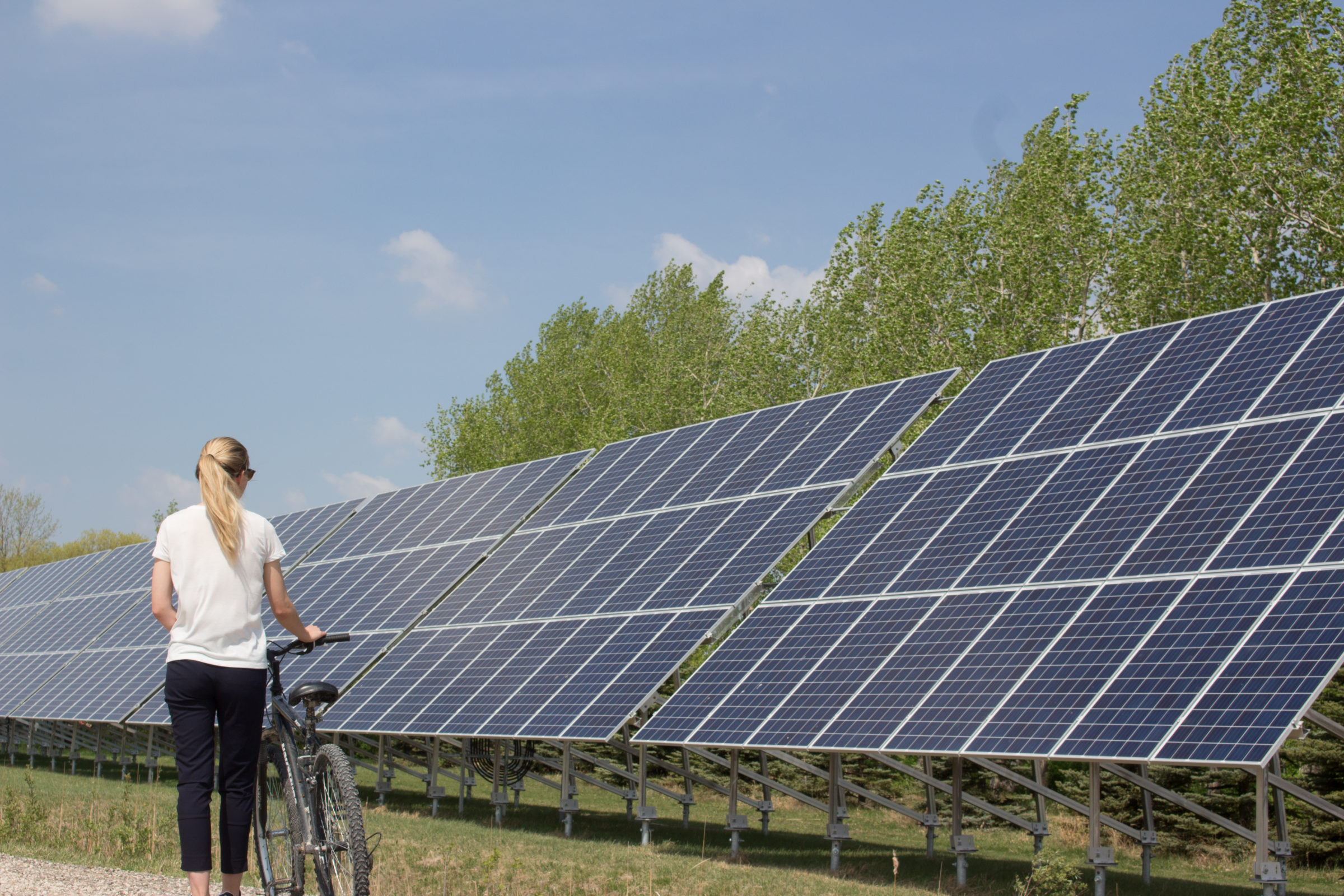 Individual walks with bike to look at solar panels in summer