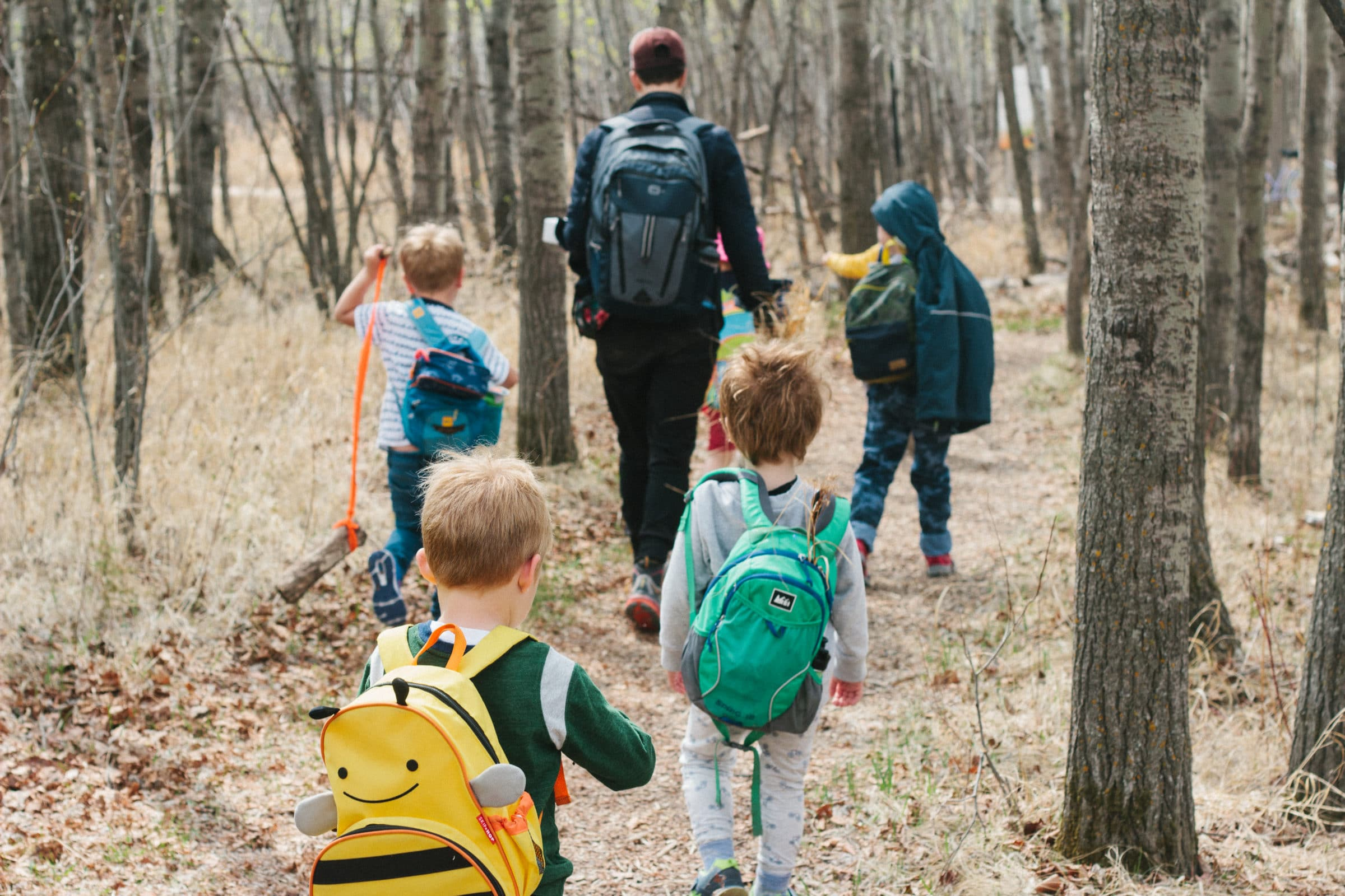 Group of children with backpacks walking through the forest.