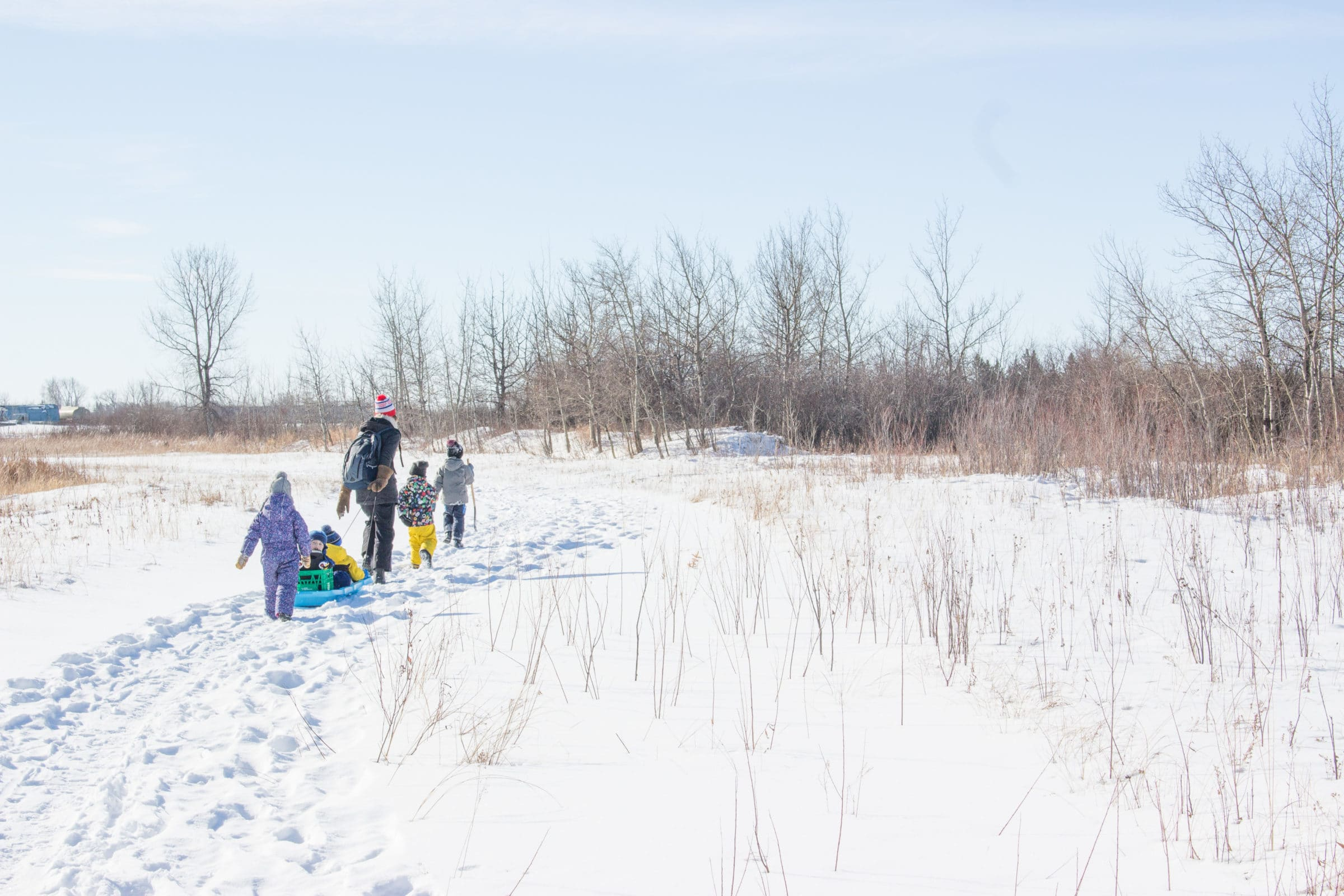 Adult pulling child in sled through snow, walking with other children.