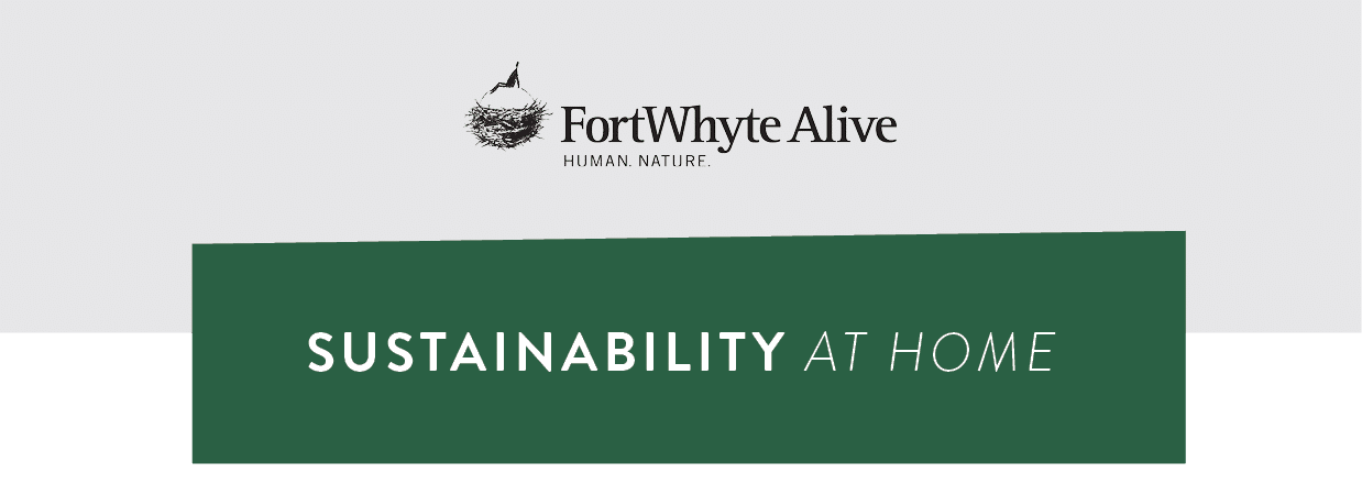 Sustainability at Home banner