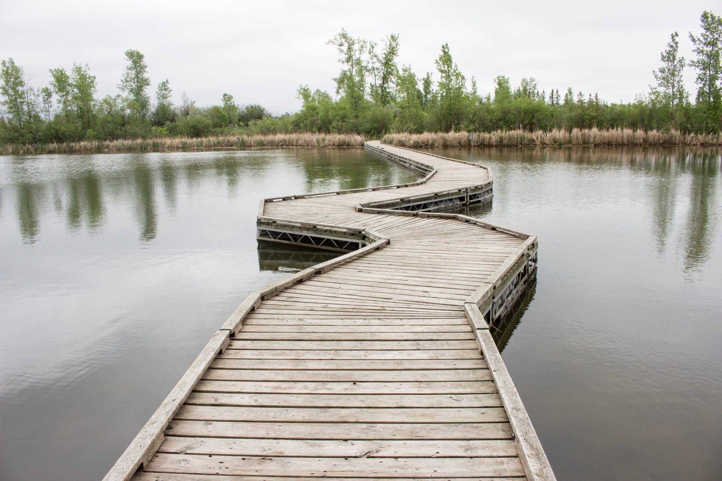 Floating boardwalk