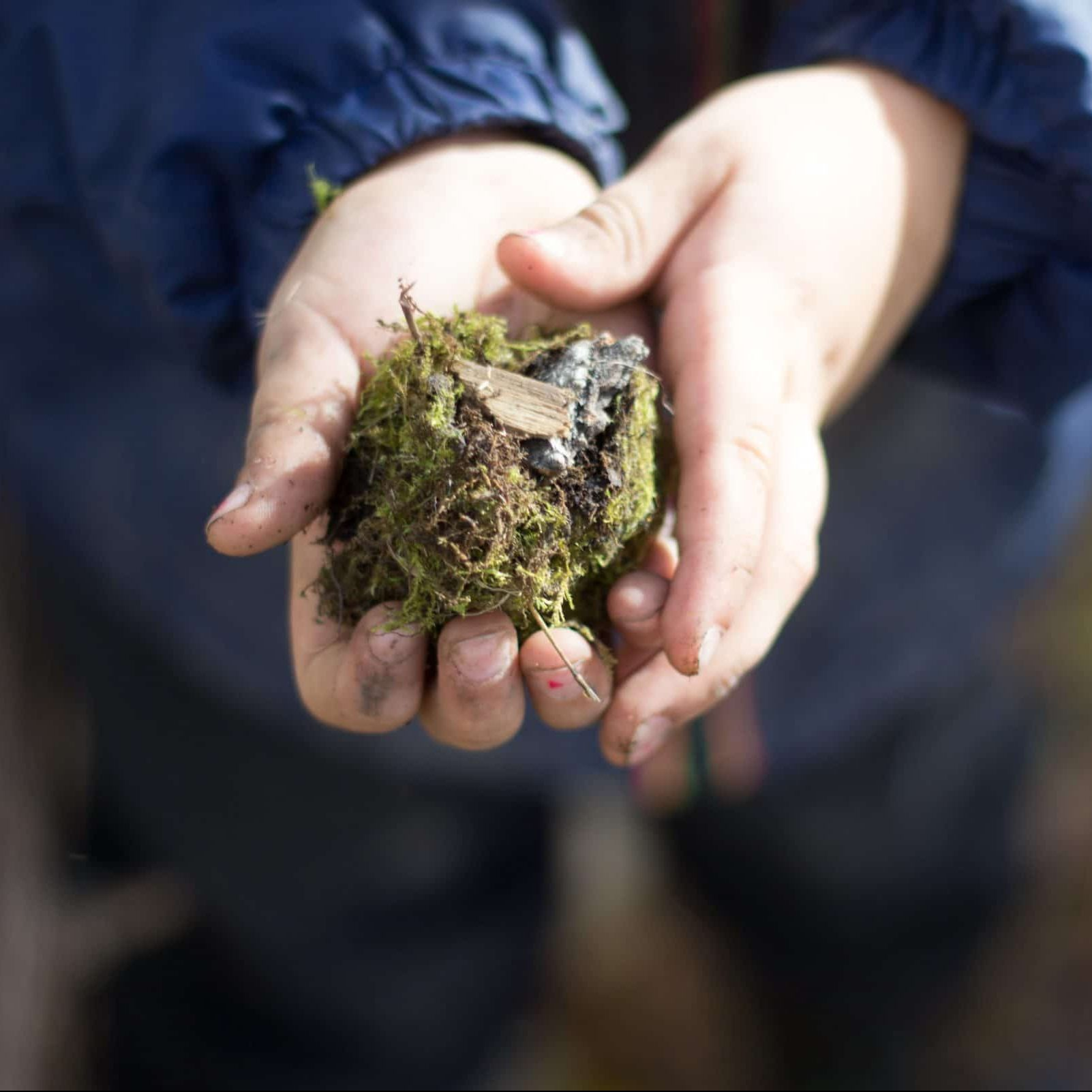 A small child's hands holds a clump of earth in their hands.