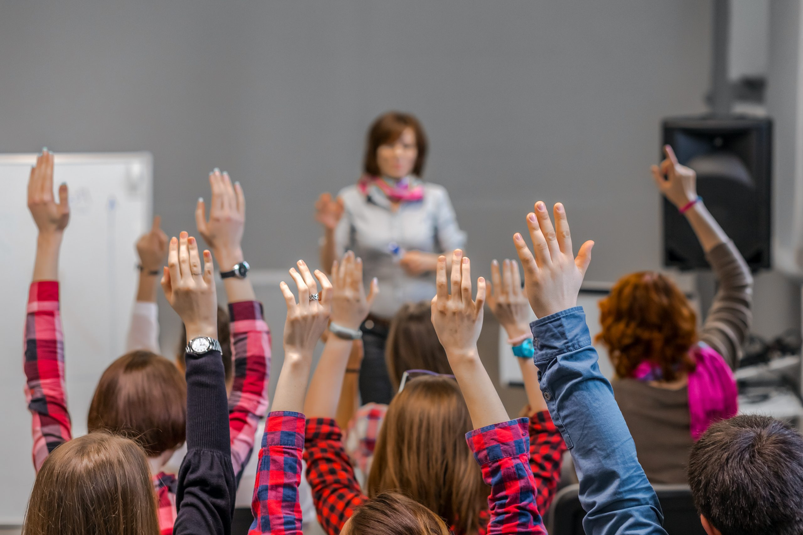 Students in a classroom raise their hands