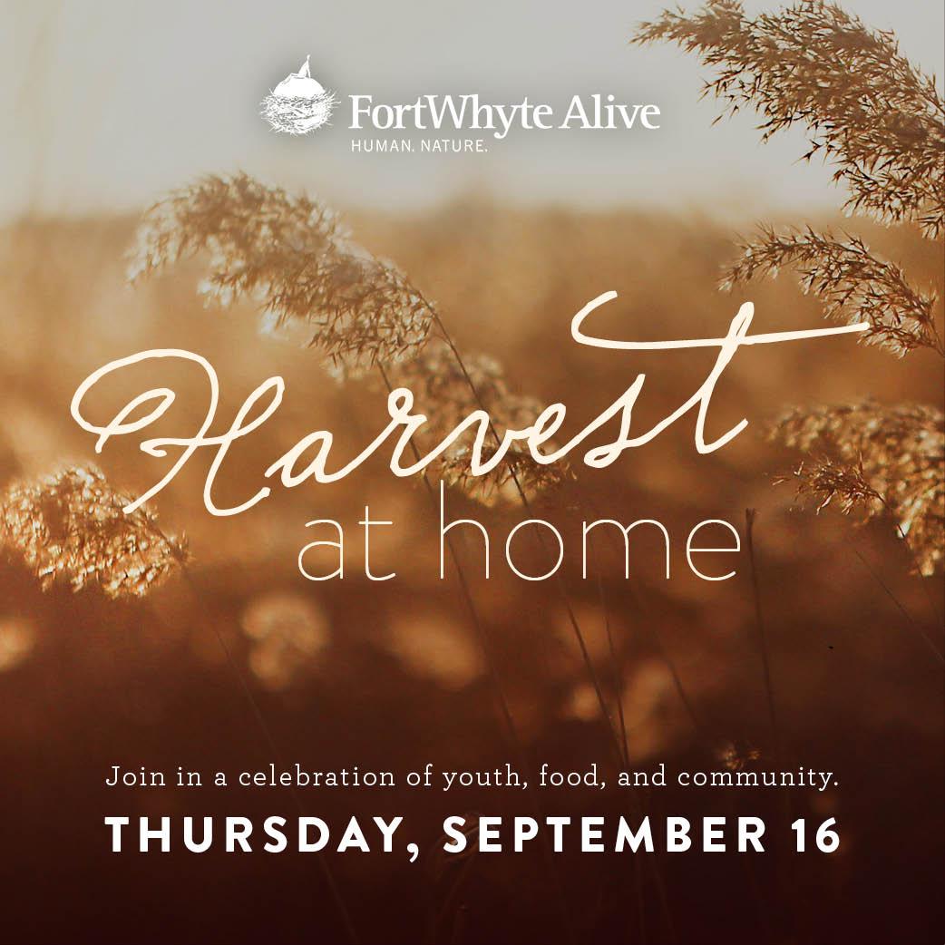 Harvest at Home: Thursday September 16