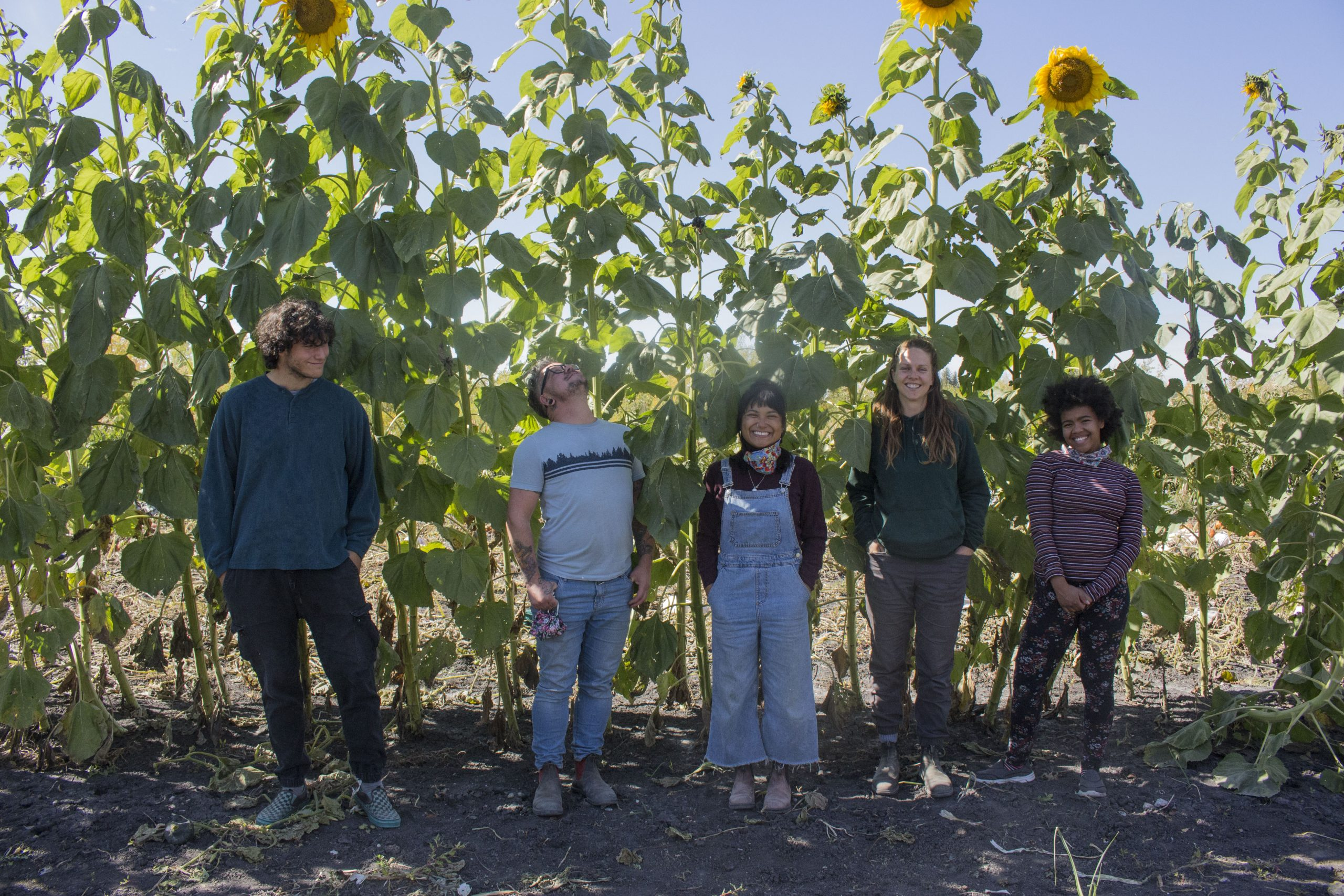 Five FortWhyte Farms staff members stand side by side in front of a row of sunflowers.