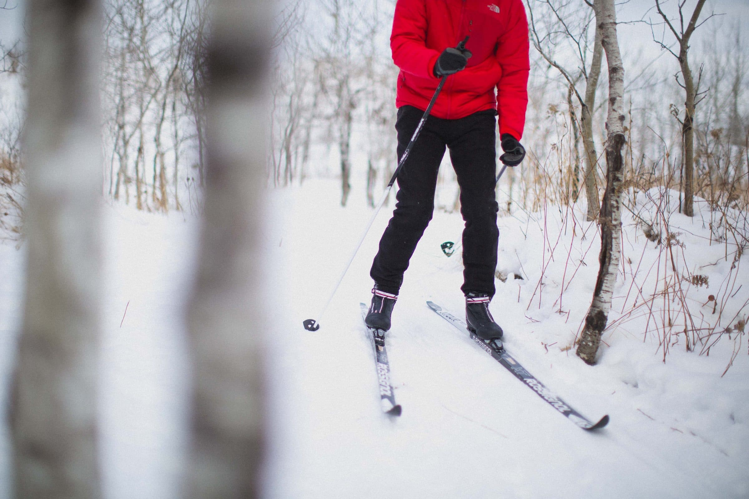 An adult on cross country skis wearing a red sweater glides through a wintery forest.