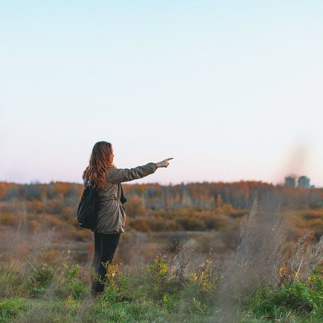 An adult stands in a field pointing out into the distance at dusk.