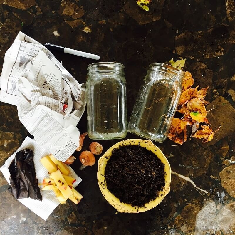 Supplies for composting in a jar are laid flat on a table.