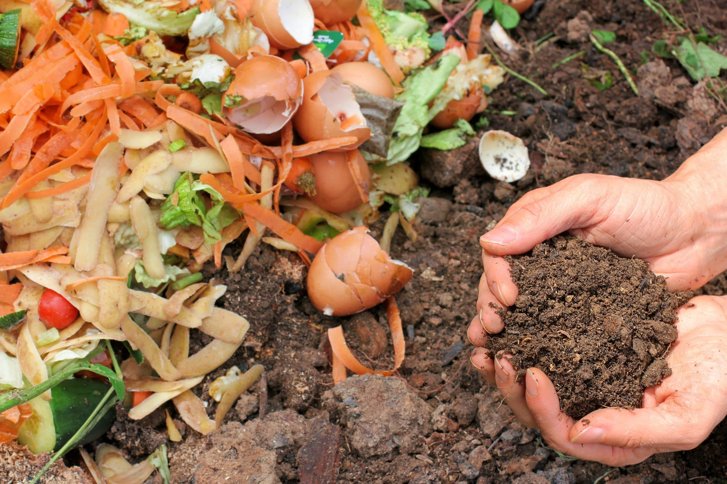 Food scraps are piled on top of dirt, a pair of hands holds the dirt in cupped hands.